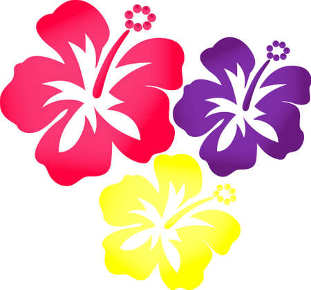 oleander: Use these tropical flowers on a bathroom towel for a hibiscus loving friend. Illustration