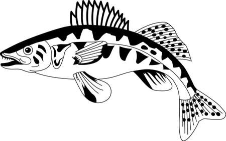 walleye: Enjoy the swimming jewels of the North Atlantic in their bright and colorful best with this design on your home projects!