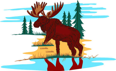 caribou: With a perfect design to please the game hunter, add fun and creativity to your interior projects! Illustration