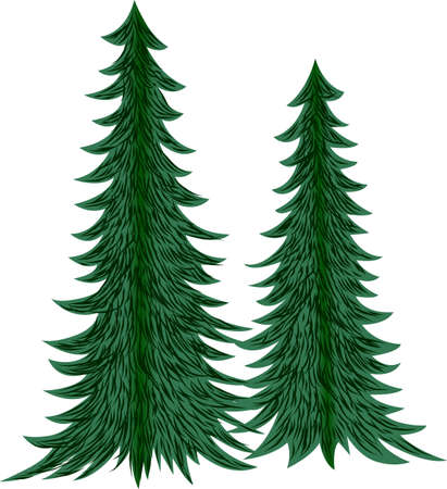 evergreens: Majestic evergreens tower above all the others when it comes to decorative appeal.  Lovely on pillows or print art for the weekend cabin!