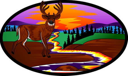whitetail deer: A colorful nature scene creates a lovely print art for home dcor.  This deer makes it especially attractive for your favorite hunter.