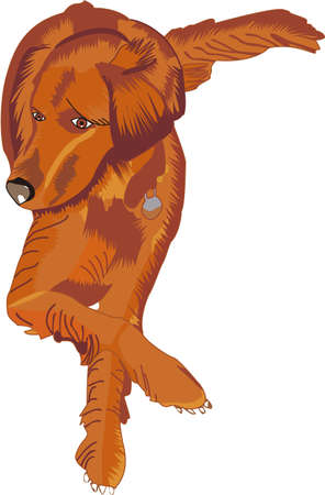 golden retriever puppy: Spoil your Retriever rotten with this design on T-shirts, Caps, Pajamas, Bags, Shirts, and Dog Bedding. Illustration