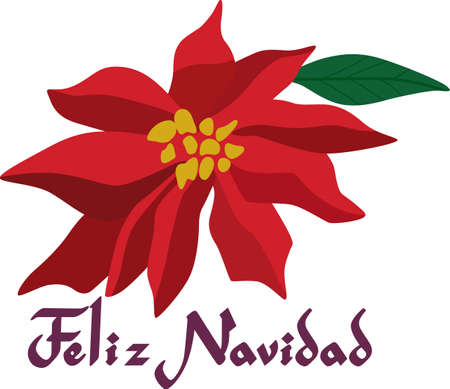 This lovely poinsettia is a floral holiday tradition.  No matter how you use it; print or fabric, it adds its special Christmas spirit. Çizim