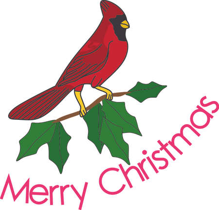 roost: No matter where you live, youll want to bring these bright red cardinals home to roost for the holidays.  Add a touch of color with this design on your holiday projects!