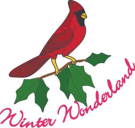 ilex: No matter where you live, youll want to bring these bright red cardinals home to roost for the holidays.  Add a touch of color with this design on your holiday projects!