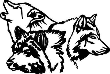 dingo: With a perfect design to please the game hunter, add fun and creativity to your interior projects! Illustration