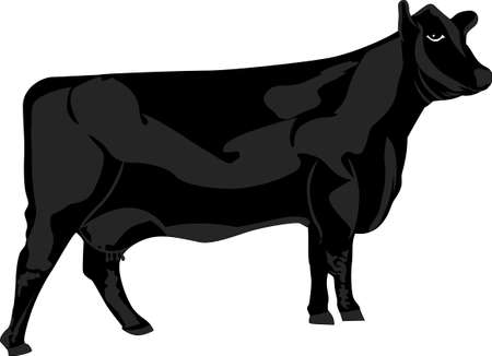 A farm is just not complete without cows!  Create something super special for the dairy crowd!