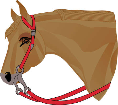 reins: We love Palominos!  This lovely equine with striking red headstall and reins is a perfect choice for any equestrian!