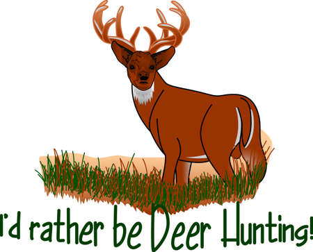 whitetail deer: We have cornered the trophy buck sought by hunters!  This beautiful buck is an eye-catching addition to apparel for the hunger.  Great for vinyl auto art too!