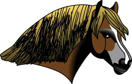 Dit ontwerp is groot om unieke giften te maken voor paardenliefhebbers. Ziet er perfect op t-shirts, sweatshirts, bakken en nog veel meer. Stock Illustratie