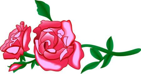 hem: Use these lovely roses on a skirt hem or on a set of kitchen linens.