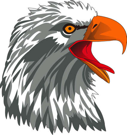 Patriotic and majestic this eagle adds his regal charm to your projects.  Perfect for apparel and home dcor projects. Great print art for vehicles too! Illustration