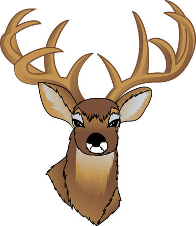 outdoorsman: We have found a hunters prize!  This big rack buck is a rare find for decorating the perfect gift for any outdoorsman