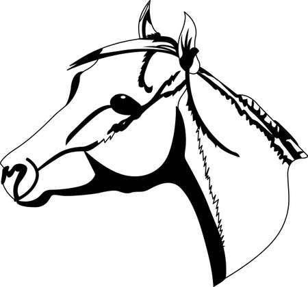 bronco: Horses are simply the best.  This simple one color drawing adds that special equestrian touch to your projects. Illustration
