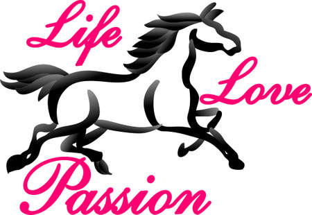 filly: Personalize equestrian clothing with grace, beauty and power, with this design on horse riding gear including saddle pads, saddle cloths, riding jackets and riding wear.