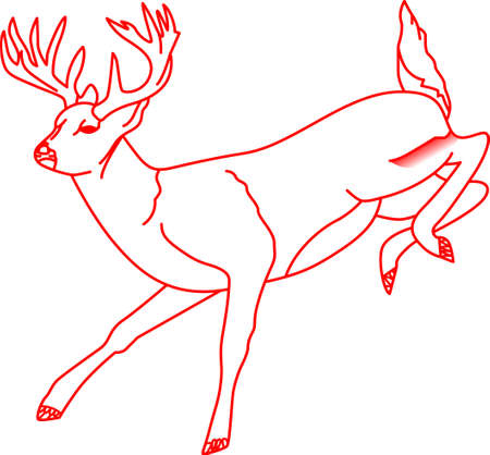 buck: This white tail buck is treasure found for the deer hunter. Lovely on a shirt or home decor for the hunters wife.