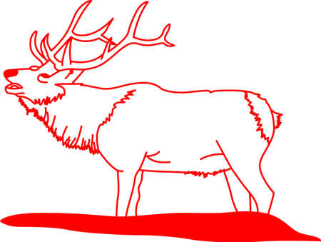 caribou: This trophy elk is treasure found for the deer hunter.  Lovely on a shirt or home dcor for the hunters wife. Illustration