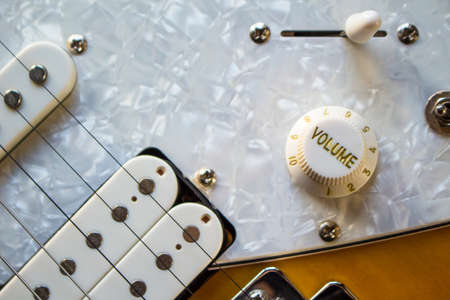 tumblers and switches of a beautiful electric guitar