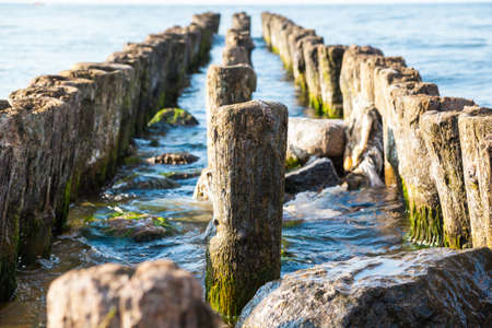 old, algae-covered, breakwaters in the sea Standard-Bild - 112000726