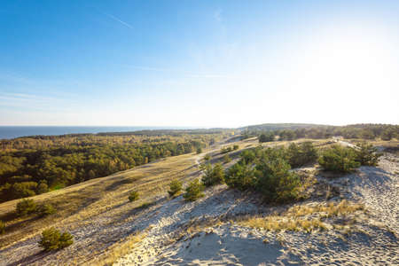 beautiful view of the protected area near the sea, Curonian Spit National Park Stock fotó
