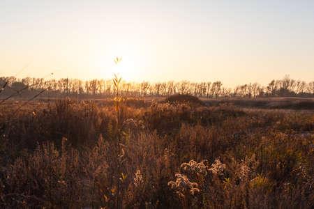sunset over the wild autumn field Stock fotó