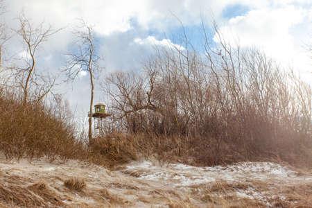 toren met uitkijkpost tussen de bomen