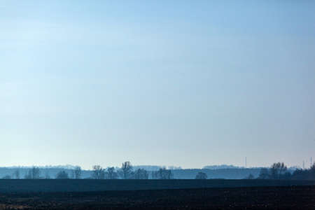 mystical mysterious landscape of a field in blue with the silhouette of a forest in haze