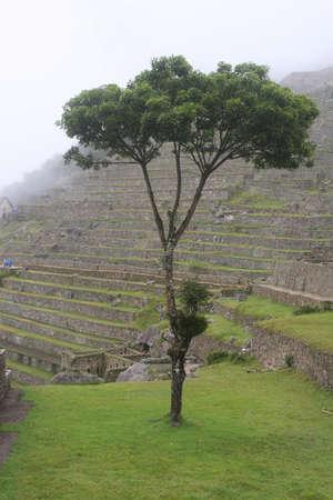 Ancient ruins of Machu Picchu located near Cusco, Peru photo