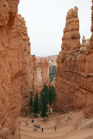 Sunset Point trail in Bryce National Park.