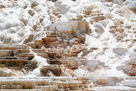 faithful: Terraced geyser at Mammoth Hot Springs