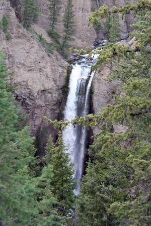 undine: Waterfall at Yellowstone National Park