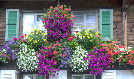 Window in a house in Switzerland with potted flowers
