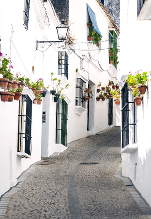 Street with white houses and flowers  in Arcos de la Frontera