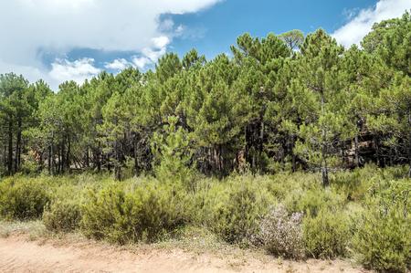 Mountains of Albarracin in Teruel