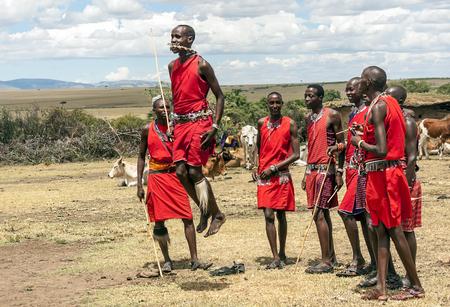 MASAI MARA, KENIA - MAI 2014. Nicht identifizierte Massai-Krieger nehmen an Wettbewerben im traditionellen Hochsprung als Teil der kulturellen Zeremonien und Tänze in der Masai Mara National Park . teil Editorial