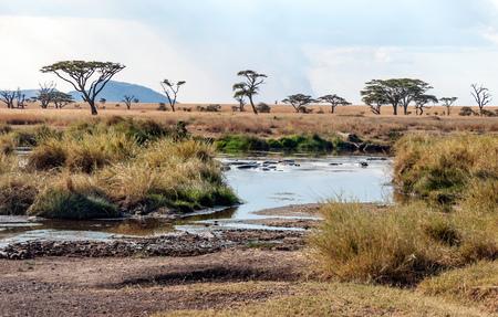 Lake in Tanzania in a sunny day