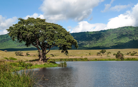 Lake in Tanzania in the Ngorogoro Valley