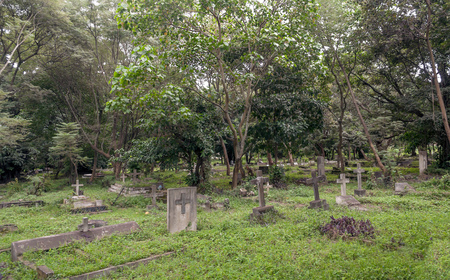 Cemetery in the forests of Tanzania