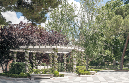 Garden of the Retiro Park in Madrid in spring