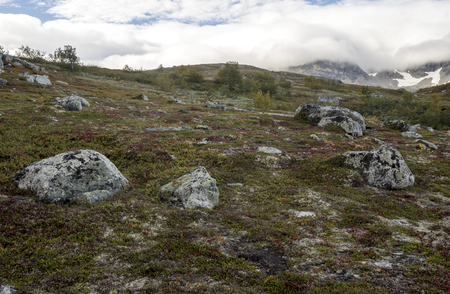 Mountains in the interior of southern Norway on a cloudy day. Stock Photo