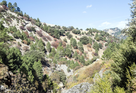 Mountains of the Sierra de Cazorla in the Spanish province of Jaen on a sunny day.