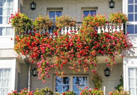 Ventanas con flores en el balcón de una pared.
