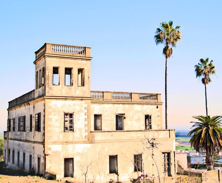 View of Lake Bornos from a ruined house with palm trees in a sunny day in the province of Cadiz Banco de Imagens