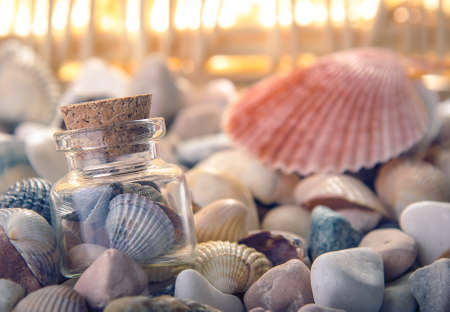 ペブル ビーチのガラスの瓶にシェル。正面から見た図。クローズ アップ。 写真素材