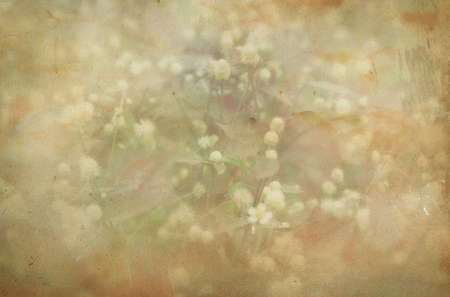 old paper background with flowers Stock Photo - 24877679