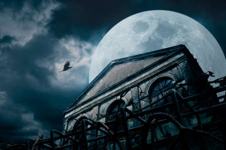 old buildings: Old grunge building with bird at night over cloudy sky and the moon behind, mysterious background