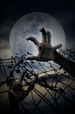 imprison: Hand over metal fence with dry leaves over dark sky, Halloween concept