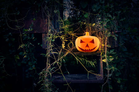 halloween background: Halloween pumpkin on old abandoned stairs train with climber plant, Halloween background Stock Photo