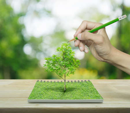 Hand with pencil drawing a tree growing from an open book on wooden table over green tree blur background, ecological concept