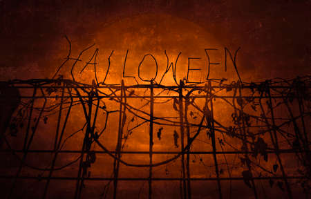 Halloween text over metal fence with dry leaves over dark sky and moon, Halloween background